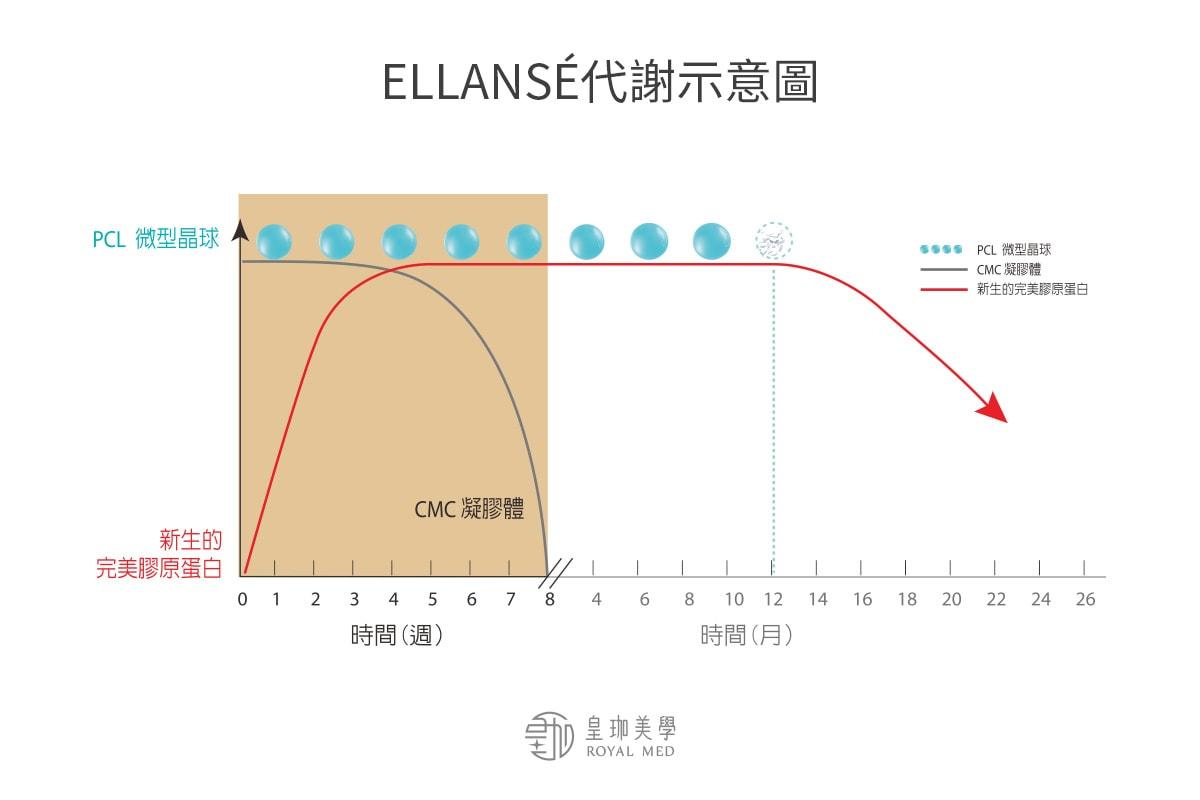 ELLANSÉ洢蓮絲代謝示意圖